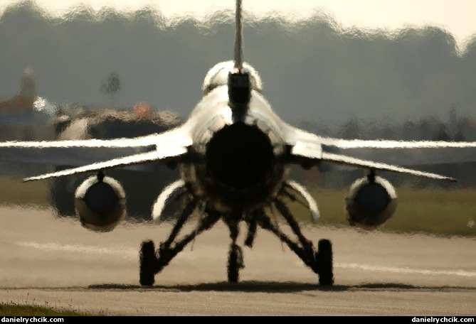 falcon air meet 2012 election