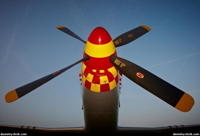 Warbirds North American P 51d Mustang Quot Nooky Booky Quot